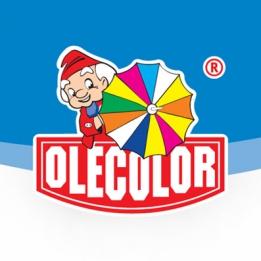 "Инструмент ""Olekolor"""